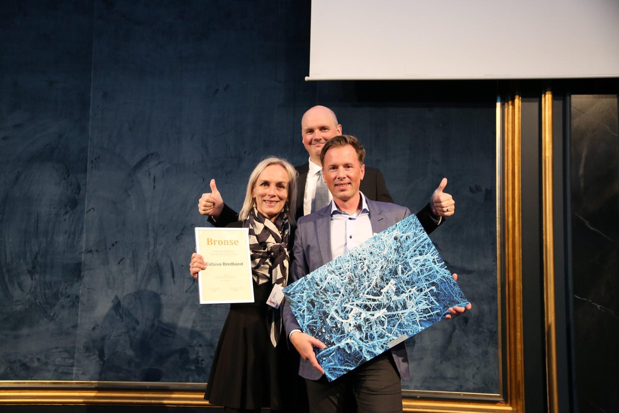 Nettsted Ikke-børsnoterte selskaper - 3. plass Eidsiva Bredbånd med Eidsiva.net